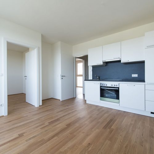 WEITBLICK - Wohn-/Essbereich mit Küche