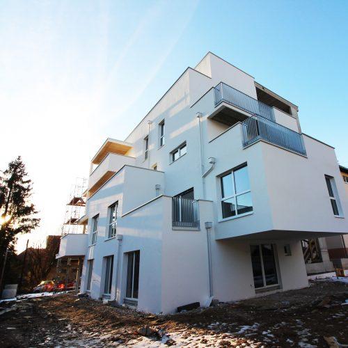 Freistil Baustellenfortschritt 2 Jänner 2019